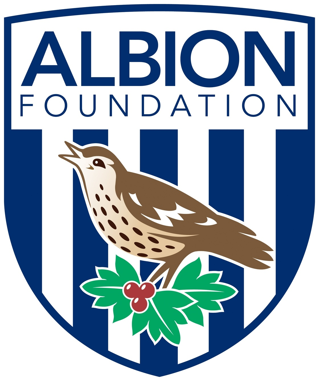 The Albion Foundation highest res